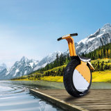 17 ZelfSaldo Unicycle van de Elektrische Motor van het Wiel van de duim het Enige