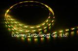 Indicatore luminoso di striscia flessibile chiaro di colore SMD3527 120LEDs LED della cucina doppio