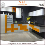N & L Modern Furniture Stainless Steel Outdoor Kitchen Cabinet
