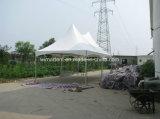 公共および私用イベントのための熱い販売6X3mのポリカーボネートの望楼のテント