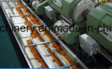 Remplir la ligne de traitement de jus d'Orange