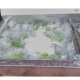 Rondelle de légumes et de fruits d'économies d'énergie avec la stérilisation de l'ozone