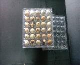 حارّ يبيع 30 فتحة بئر بلاستيكيّة بيضة صينيّة الصين إمداد تموين