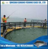 Piscicoltura della gabbia dell'HDPE nel lago volta
