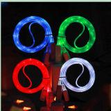 LEDの標識燈のiPhoneのデータケーブル(CB-168)