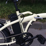 Hot Selling 20 '' Mini Folding Electric Bike