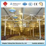 Struktureller vorfabrizierter Huhn-Bauernhof-Stahlhochbau (TL-WS)
