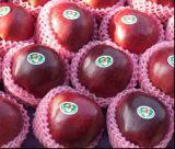 새로운 작물 신선한 Huaniu Apple