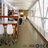 Commercial sécher le plancher de luxe d'intérieur arrière de vinyle de PVC