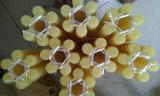 Acoplamento do plutônio, acoplamentos do plutônio, acoplamentos de borracha, acoplamento do poliuretano, borracha que acopla todos os tipos da cor