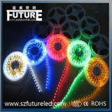 Plastique et polymère 12V RGB Flexible LED Light Strip avec 5m / Roll