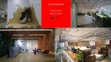 現代優れたオフィスエグゼクティブか会議の椅子(PS-NL--4056-5-G)