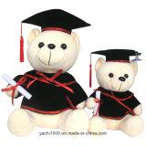 Venda por grosso Teddy Bear para alunos de graduação