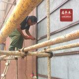 Opruimen van de Muur van de Bekleding van de Muur WPC van Eco het Vriendschappelijke Waterdichte Buiten