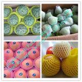 Het Schuim die van de ananas de Netto Machine van de Uitdrijving inpakken