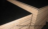 Encofrado de hormigón 12 mm, negro/marrón Film enfrenta el contrachapado para la construcción