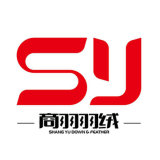 RDS China Fabriek Langer dan de 10cm Gewassen Witte Veer van de Eend