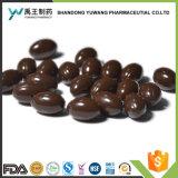 미용 제품 서양지치 기름 Softgels 캡슐