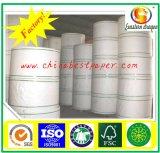 208g Premium Coated Cup Paper