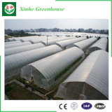 情報処理機能をもったマルチスパンの農業のプラスチックフィルムの野菜の温室