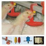 Поставщик сарая цыплятины оборудования и Prefab фермы цыпленка для одного обслуживания стопа