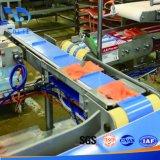 Riga da tavolo personalizzata del sistema del nastro trasportatore del commestibile