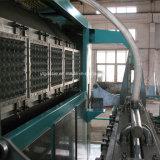 Papel multifuncional de la bandeja de huevos que hace la máquina