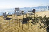 حديثة بسيطة تصميم حارّ عمليّة بيع [أليمينوم] حديقة يتعشّى مجموعة يستعمل داخليّة وخارجيّ ([يت749])