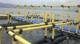 HDPE Rohr und erstklassiges Papier für Aquakultur-Fischzucht-Rahmen auf dem Wasser