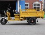 熱い3台の車輪のオートバイの電気人力車の三輪車によってTrikeは貨物が自転車に乗る