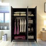 Neue Tür-hölzerne Garderobe des Entwurfs-3
