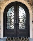 長い保証が付いている鉄の二重入口の前ドア