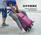 Bagagli molli di vendita caldi di prezzi poco costosi con il sacchetto dei bagagli delle 2 rotelle