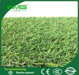Het Natuurlijke Synthetische Gras van het landschap voor Europa