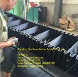 Correia transportadora do Sidewall resistente frio exportada para Rússia