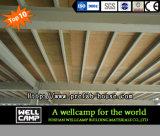 Taller fuerte del acero del edificio de la estructura de acero