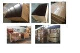 Madeira compensada interna de madeira dura Phenolic de madeira da construção da madeira compensada da construção da colagem do Poplar/18mm