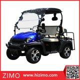Carrinho de golfe de 60V Single Seat para venda
