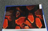 Numéro animal La005b-2 de configuration de film d'impression de transfert de l'eau du best-seller