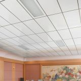 Alumínio Colocar-no teto suspendido do metal para o escritório decorativo