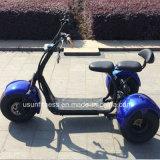 Cocos elétricos da cidade do triciclo 3wheels com Ce