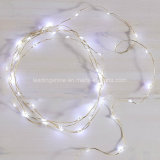 Sea Shell Starry 100 LEDs 33 Feet USB String Lights com adaptador de alimentação