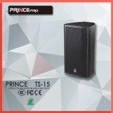 Huis van 15 Duim van de prins Ts15 het Hifi Passieve van Systeem van de PA van de Spreker van de Verering het Professionele