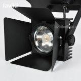 20-30Wの高品質LEDの穂軸トラックライト