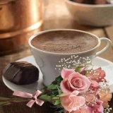 Sofortiger kalter wasserlöslicher Kaffee-Rahmtopf-guter Preis