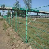 塀、有刺鉄線