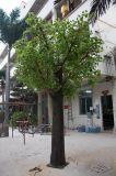 Árbol artificial del Ginkgo de la alta calidad para el jardín