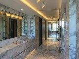 Décoration de salle de bains de marbre italien de blanc d'Arabascata