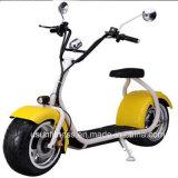 1000W Harleyのセリウムが付いている脂肪質のタイヤ都市ココヤシの電気スクーター