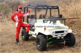 250cc automatico ATV, 75km/H ATV elettrico con Ce
